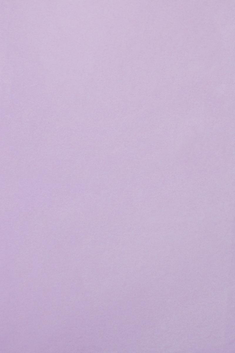Бумага тишью Бэстекс, цвет: лаванда, 50 х 70 см, 3 листа583491_HY06020_лавандаБумага тишью Hobby and You - это тонкая, нежная и привлекательная декоративная бумага. Она производится из беленой сульфатной целлюлозы, получаемой из древесины деревьев хвойных пород. Бумага тишью Hobby and You идеально подходит для стильного оформления подарков и для создания помпонов, цветов, гирлянд и другого декора.Такой упаковочный элемент прекрасно дополнит любую упаковку и сделает ее яркой и праздничной.Размер бумаги тишью: 50 х 70 см.