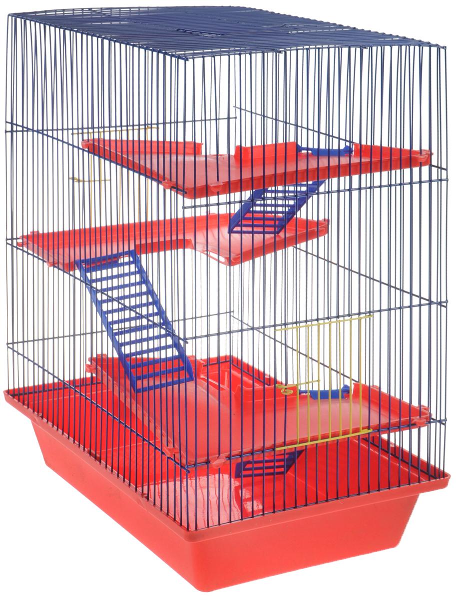 Клетка для грызунов ЗооМарк Гризли, 4-этажная, цвет: красный поддон, синяя решетка, красные этажи, 41 х 30 х 50 см240КСКлетка ЗооМарк Гризли, выполненная из полипропилена и металла, подходит для мелких грызунов. Изделие четырехэтажное, оборудовано пластиковыми площадками и лестницами. Клетка имеет яркий поддон, удобна в использовании и легко чистится. Сверху имеется ручка для переноски, а сбоку удобная дверца. Такая клетка станет уединенным личным пространством и уютным домиком для маленького грызуна.