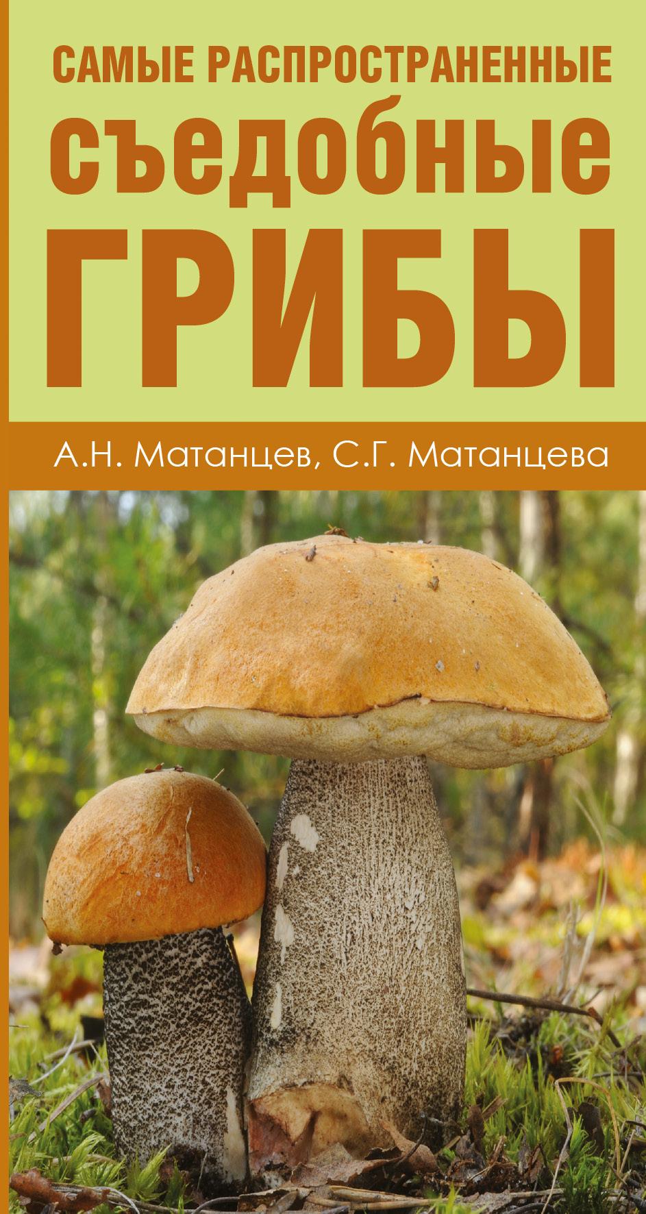 А. Н. Матанцев, С. Г. Матанцева. Самые распространенные съедобные грибы