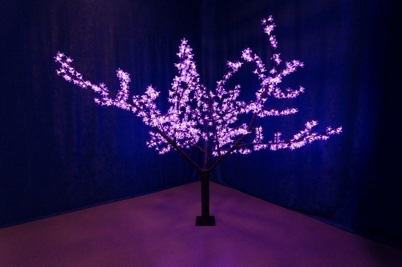 Светодиодное дерево Neon-Night Сакура, цвет: фиолетовый, высота 170 см531-131Световое дерево Сакура представляет собой имитацию цветущей японской сакуры. Оно используется для декоративного освещения интерьеров и ландшафтов. Такое дерево может стать прекрасным украшением для вашего дома, офиса, торгового зала, кафе, ресторана или загородного участка. Оно создаст уют, придаст оригинальный стиль и необходимый вам колорит независимо от времени года.Конструкция имеет лекгосплавной каркас в оболочке из темного пластика. На ветках дерева расположены яркие светодиодные гирлянды с силиконовыми насадками (цветками). Светодиодное дерево выглядит очень натурально. Питание осуществляется через сетевой трансформатор, поэтому изделие является низковольтным и может использоваться в уличных условиях. Высота дерева: 1,7 м.1000 светодиодов фиолетового цвета, фиолетовый цвет цветов.
