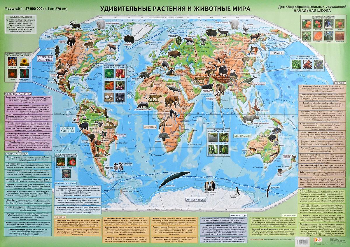 Удивительные растения и животные мира. Настенная карта
