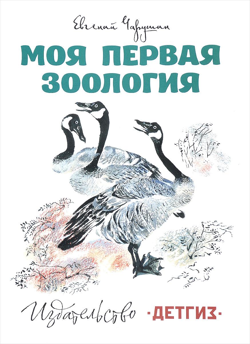 Евгений Чарушин Моя первая зоология бологова в моя большая книга о животных 1000 фотографий