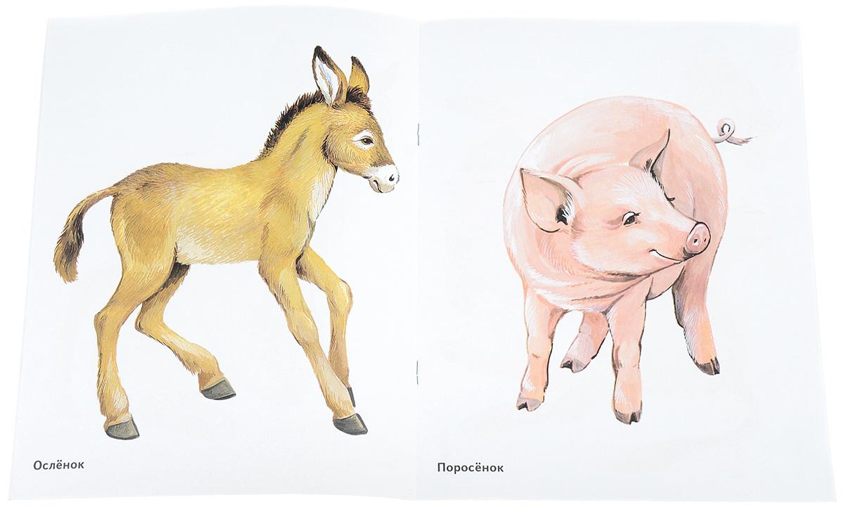 бежевых рисунок детенышей животных начало спуска белая