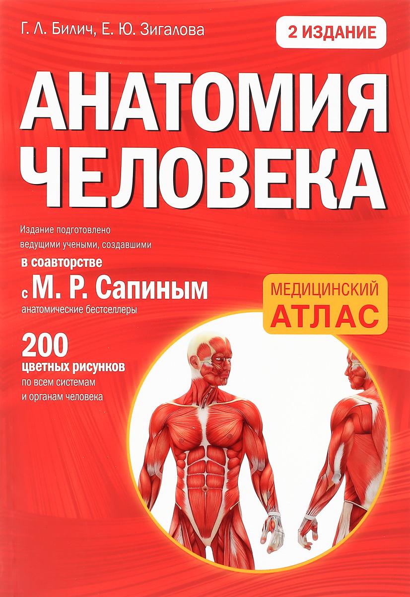 Г. Л. Билич, Е. Ю. Зигалова Анатомия человека г л билич е ю зигалова биология для поступающих в вузы