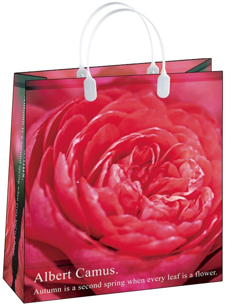Пакет подарочный Bello, 23 х 10 х 26 см. BAS 66 пакет подарочный bello 23 х 10 х 26 см bas 91