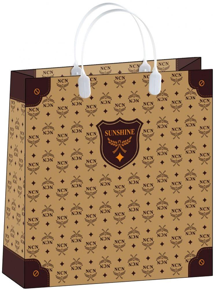 """Пакет подарочный """"Bello"""", 30 х 10 х 30 см. BAM 101"""