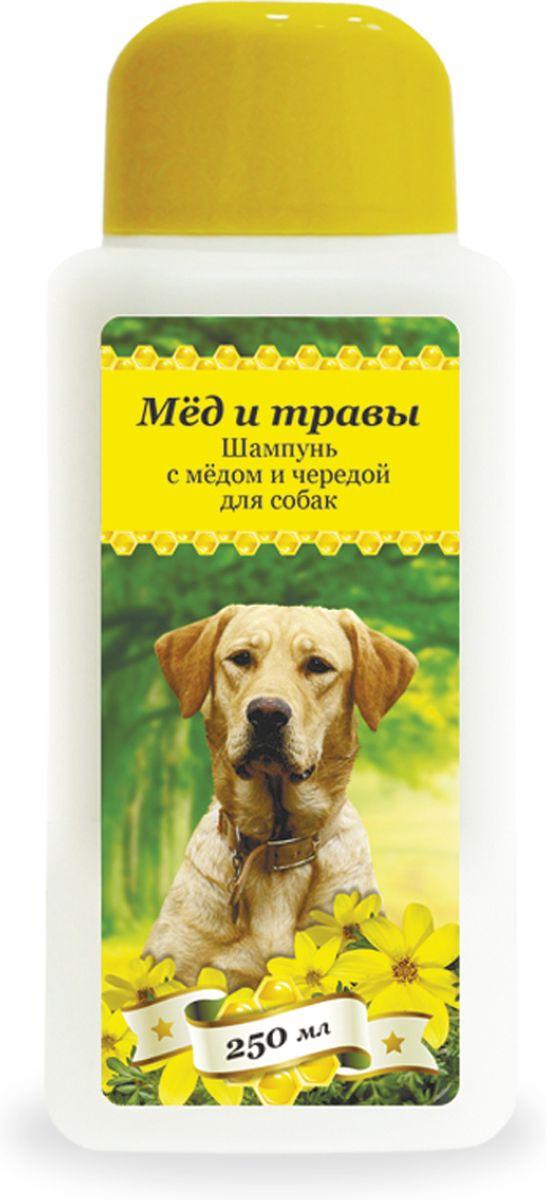 Шампунь для собак Пчелодар, с медом и чередой, 250 мл1039Серия косметических мягких шампуней Мед и травы специально разработана для ежедневного ухода за шерстью и кожей. Добавление натурального меда и экстрактов трав в состав шампуней позволяет превосходно промывать длинную и густую шерсть, устранять неприятный запах, укреплять шерстный покров и сокращать период линьки у животного. Шампуни глубоко увлажняют, смягчают и питают кожу животного, устраняют сухость и шелушения, помогают восстановить защитный слой.Натуральные компоненты косметических шампуней серии Мед и травы позволяют применять их для животных с чувствительной кожей, склонной к аллергическим реакциям, а также щенкам и котятам.Шампунь с медом и чередой подходит для собак с чувствительной кожей, склонной к дерматитам. Входящий в состав натуральный экстракт череды снимает воспаление, успокаивает раздраженные участки кожи, устраняет зуд, способствует заживлению мелких ран и расчесов.Состав: вода очищенная, мед цветочный натуральный, натрия лаурет сульфат, кокамидопропил бетаин, кокамид ДЕА, цетримониум хлорид, таурин, Д-пантенол, динатрий ЭДТА, экстракт череды, парфюмерная композиция, лимонная кислота, метилхлороизотиазолинон и метилизотиазолинон.Способ применения:шерсть животного полностью смочить теплой водой, нанести небольшое количество шампуня, втирая до образования пены. После смыть водой и высушить шерсть.
