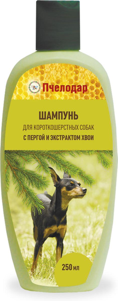 Шампунь Пчелодар для короткошерстных собак, с пергой и хвоей, 250 мл1045Шампунь с пчелиной пергой и экстрактом хвои для короткошерстных собак разработан специально для постоянного ухода за шерстью и поддержания здоровья кожи. Входящие в состав шампуня натуральные компоненты (перга, экстракт хвои и сбор трав) оказывают выраженное антисептическое, успокаивающее и дезодорирующее действие на кожу животного, глубоко питают, увлажняют и стимулируют рост шерстного покрова; помогают сократить период линьки и предотвратить чрезмерное выпадение шерсти. Шампунь регулирует работу сальных желез и помогает справиться с неприятным запахом животного. При регулярном применении шампуня остевой волос и подшерсток насыщаются питательными веществами (витаминами, микро- и макроэлементами, аминокислотами), восстанавливаются изнутри, обновляются и выглядят ухоженными, блестящими и шелковистыми. Натуральные компоненты Шампуня с пчелиной пергой и экстрактом хвои позволяют применять его для животных с чувствительной, склонной к аллергическим реакциям коже, а также щенкам.Состав: вода очищенная, пчелиная перга, натрия лаурет сульфат, кокамидопропил бетаин, кокамид ДЕА, пальмитамидопропилтримониумхлорид, цетримониум хлорид, Д-пантенол, динатрий ЭДТА, экстракты трав (люцерна, зверобой, крапива), парфюмерная композиция, лимонная кислота, метилхлороизотиазолинон и метилизотиазолинон.Показания:шампунь применяют для бережного ухода за шерстью и кожей животных. Рекомендовано использовать при тусклой, потерявшей блеск шерсти; при затянувшейся линьке и шерсти, склонной к выпадению; при «проблемной» коже, склонной к дерматитам, раздражениям и перхоти, и при имеющихся на коже ранах, ссадинах и расчесах; при появлении неприятного специфического запаха от животного.Способ применения:шерсть животного полностью смочить теплой водой, нанести небольшое количество шампуня, втирая до образования пены. После смыть водой и высушить.