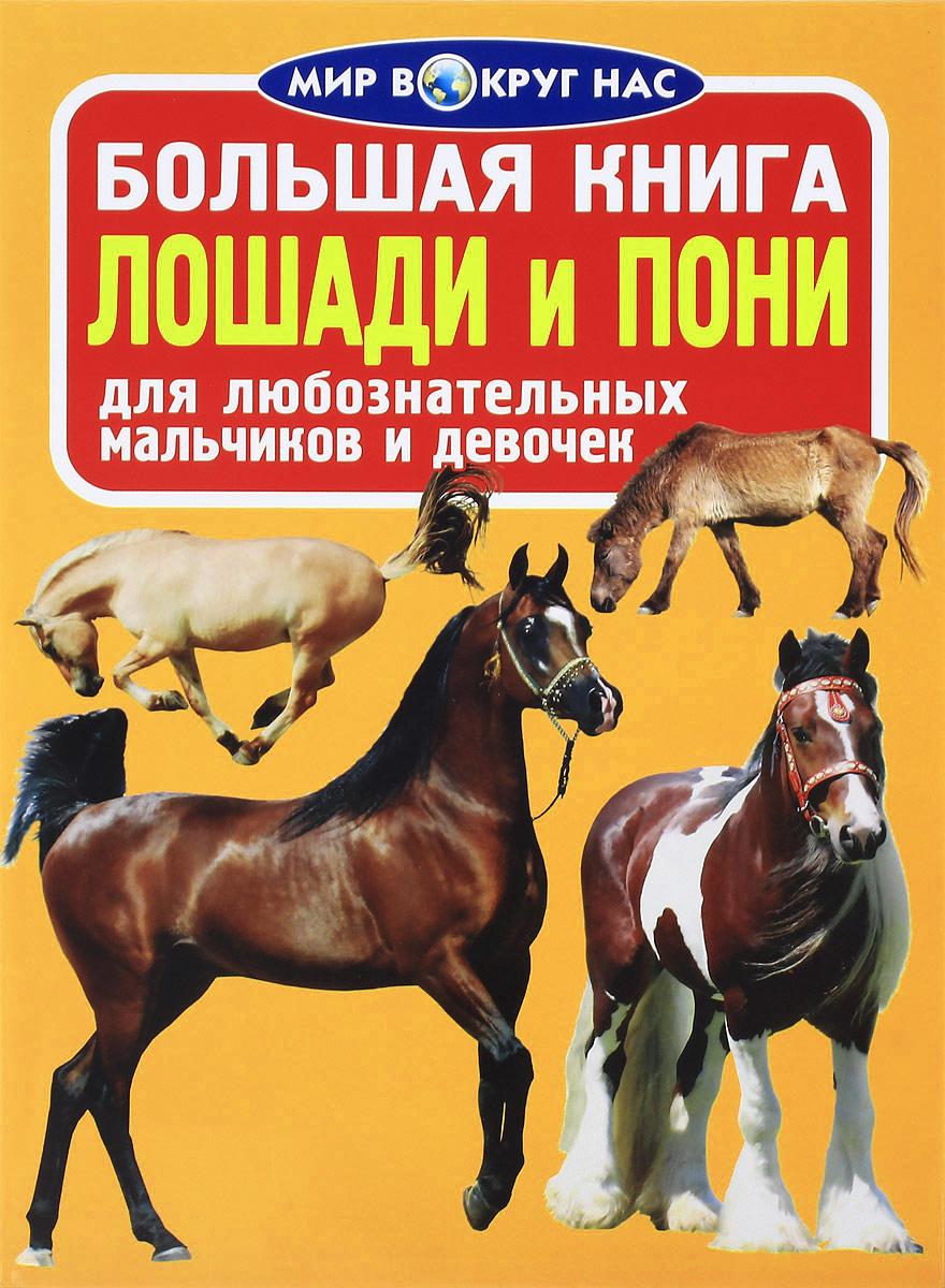 О. В. Завязкин Лошади и пони махаон моя большая книга о лошадях и пони