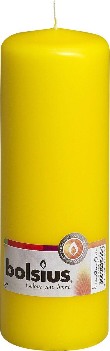 Свеча Bolsius, цвет: желтый, высота 20 см103615570111Свеча Bolsius выполнена из парафина в классическом стиле. Ее можно поставить в любое место и она станет ярким украшением интерьера. Свеча Bolsius создаст незабываемую атмосферу, будь то торжество, романтический вечер или будничный день.