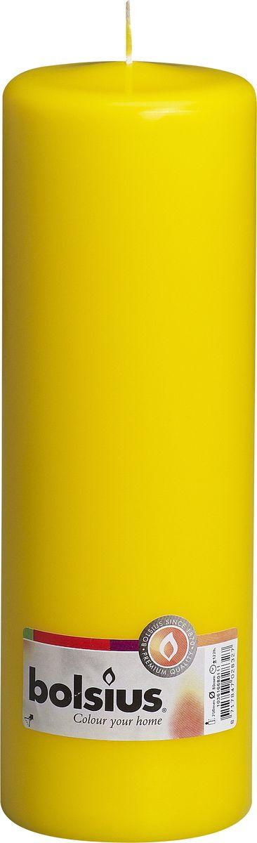 Свеча Bolsius, цвет: желтый, высота 25 см свеча ароматизированная bolsius ваниль высота 6 3 см