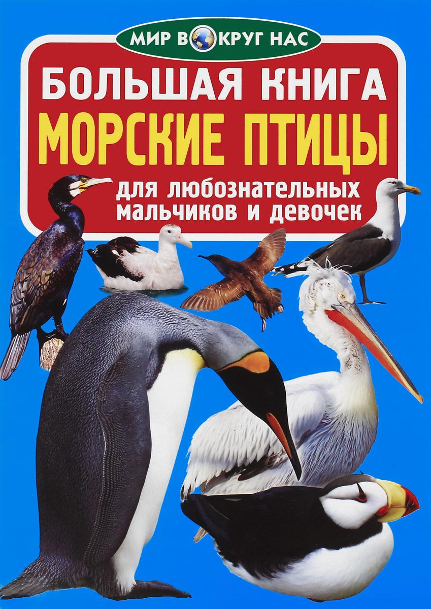 Большая книга. Морские птицы книга