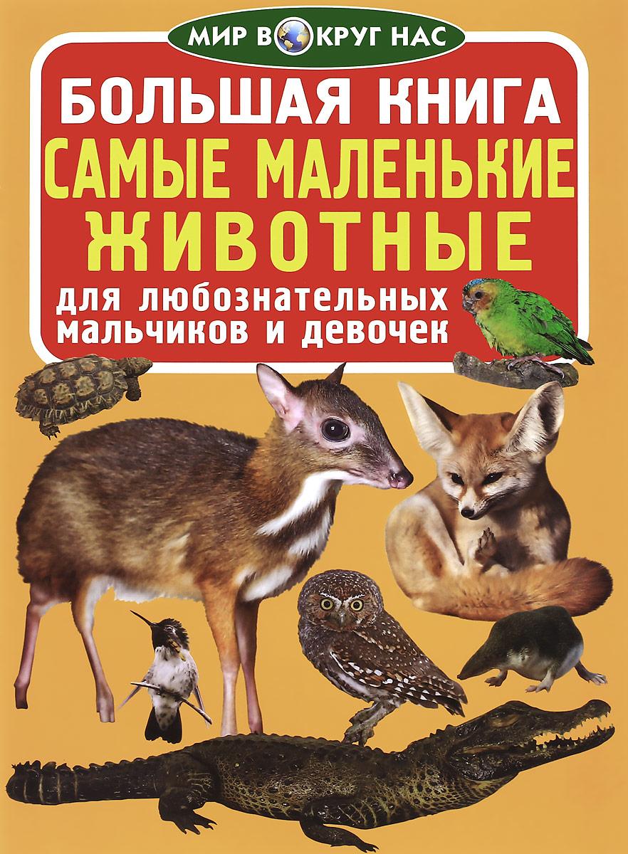 Большая книга. Самые маленькие животные