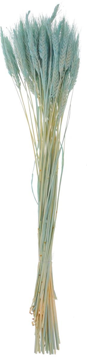 Украшение декоративное Lovemark Пучок пшеницы, длина 70 см6029Украшение декоративное Пучок пшеницы - великолепный подарок себе и вашим близким. Этот очаровательный предмет интерьера будет приковывать взгляды ваших гостей.Изделия из соломы несут в себе энергию солнечных лучей. Несмотря на свой хрупкий вид, cолома - прочный и долговечный материал, а значит не помнется и не поломается со временем. Рекомендации по уходу: изделие должно находиться в сухом помещении.