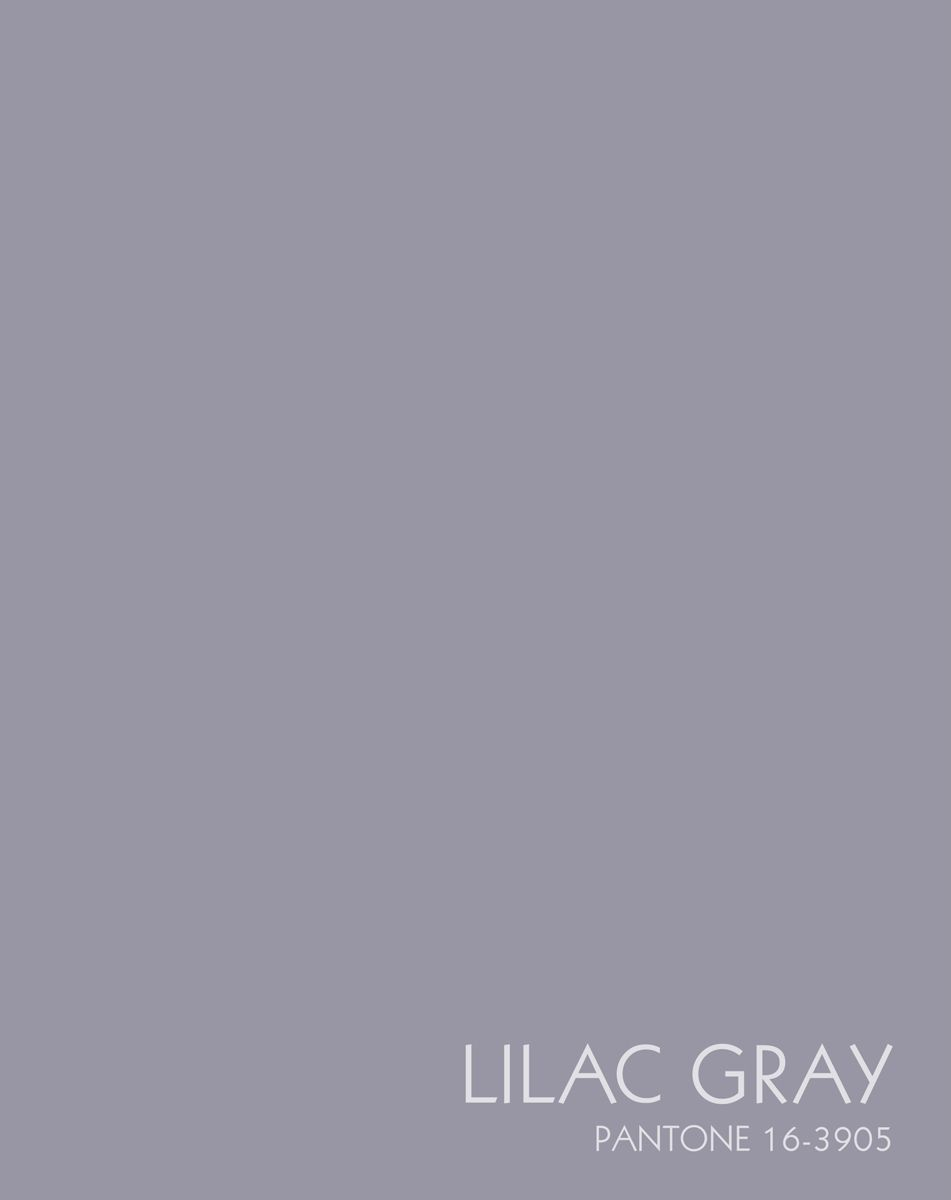 Канц-Эксмо Записная книжка Цвета года Лилово-серый 96 листов в клетку colibri ваза egypt