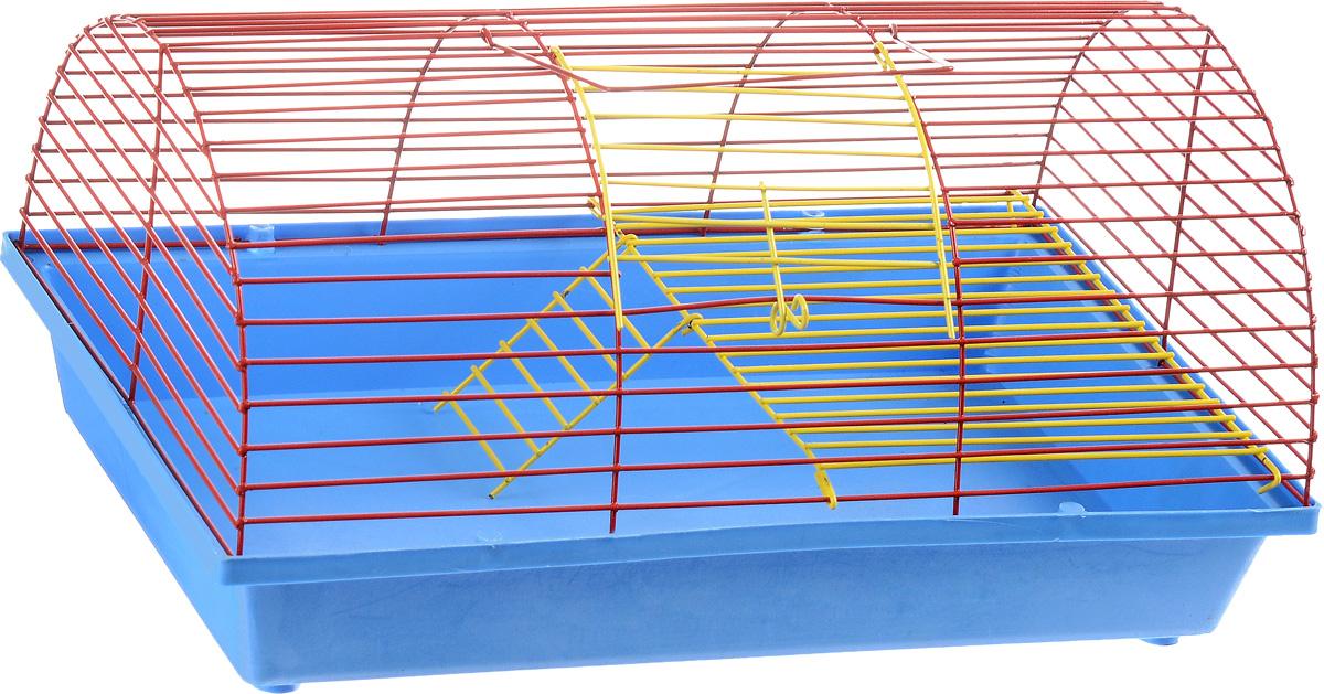 Клетка для грызунов ЗооМарк, цвет: голубой поддон, красная решетка, 36 х 23 х 17,5 см. 110ж110_голубой, красныйКлетка ЗооМарк, выполненная из полипропилена и металла, подходит для грызунов. Она имеет яркий поддон, удобна в использовании и легко чистится. Клетка оснащена вторым ярусом с лесенкой, выполненных из металла.Такая клетка станет уединенным пространством и уютным домиком для маленького грызуна.