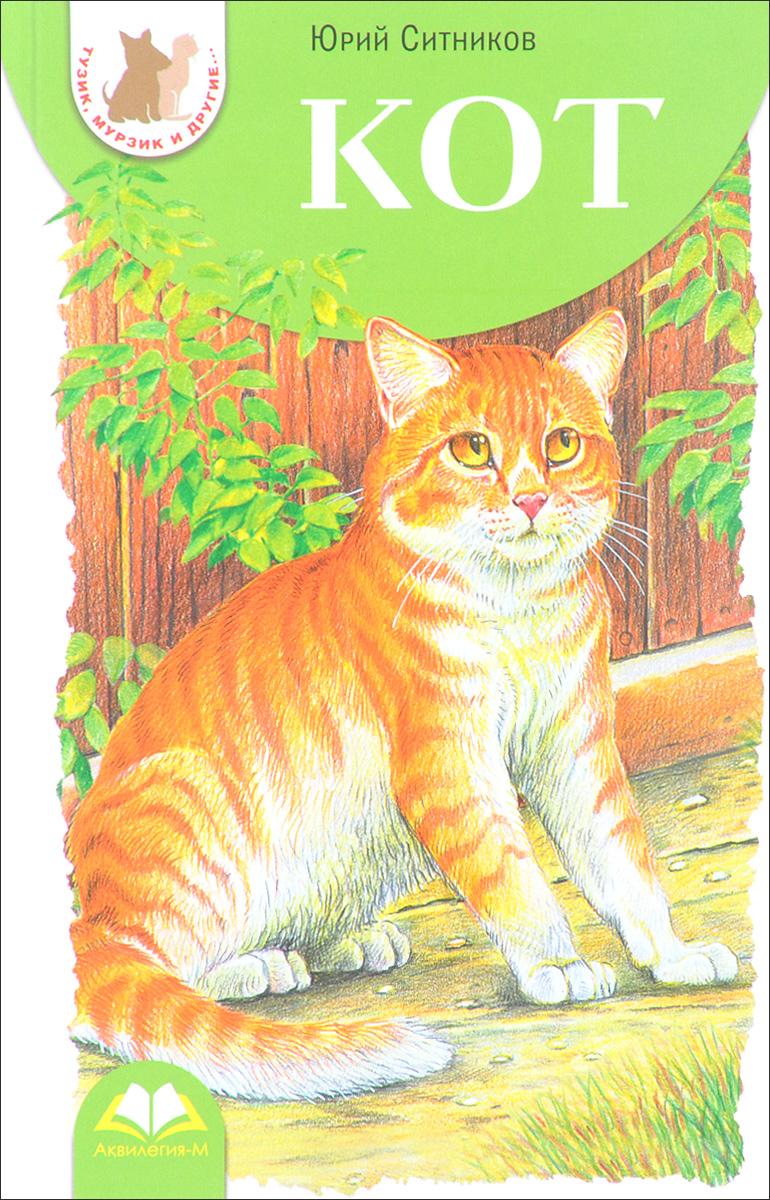 Юрий Ситников Кот ситников ю кот