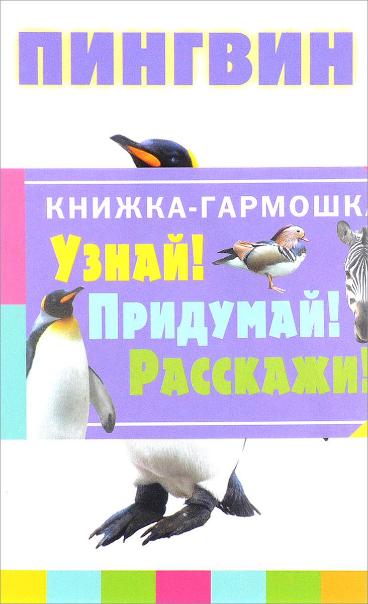 Животные. Книжка-гармошка животные полюсов книжка гармошка