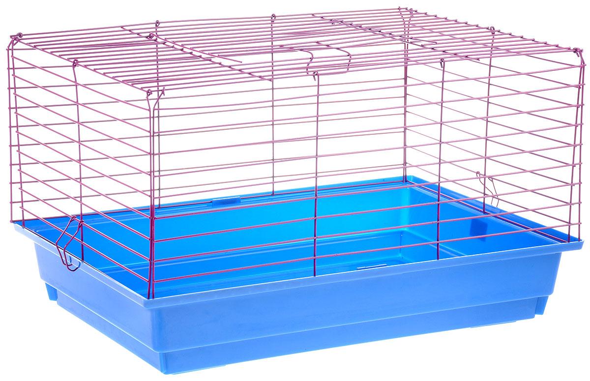 Клетка для кролика ЗооМарк, цвет: синий поддон, фиолетовая решетка, 50 х 35 х 30 см610СФКлассическая клетка ЗооМарк со сплошным дном станет уединенным личным пространством и уютным домиком для кролика. Изделие выполнено из металла и пластика. Клетка надежно закрывается на защелки. Легко чистится. Для более удобной транспортировки клетку можно сложить.