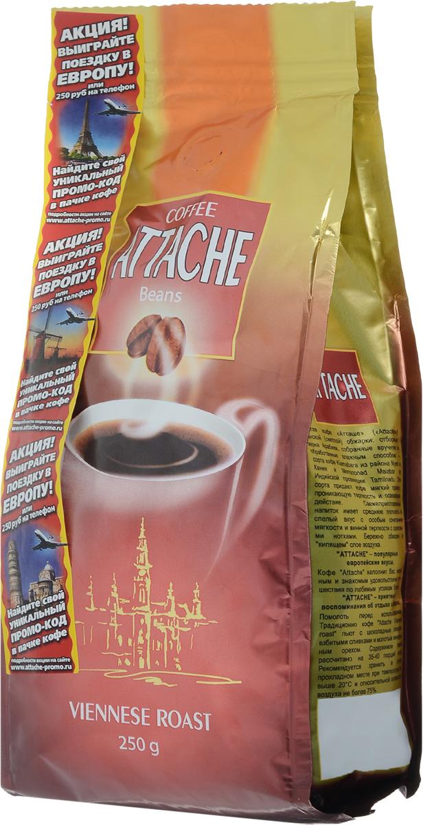 Attache Венская обжарка кофе в зернах, 250 г4600946000629Кофе Attache светлой обжарки обладает мягким привкусом, проникающей терпкостью и освежающим действием.Свежеприготовленный напиток имеет среднюю плотность и спелый вкус. Кофе наполнит вас желанным и знакомым удовольствием путешествия по любимым уголкам Европы.