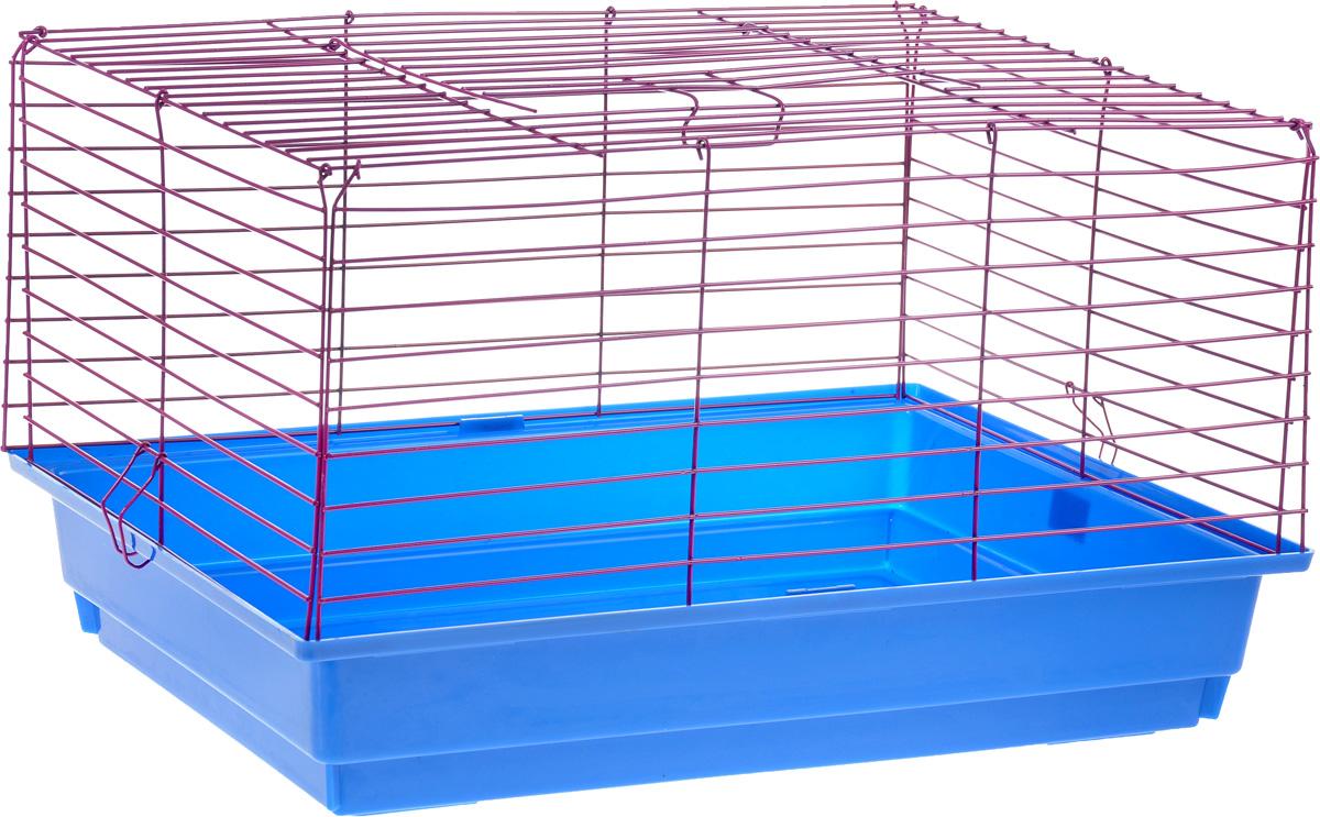 Клетка для кролика  ЗооМарк , цвет: синий поддон, фиолетовая решетка, 60 х 40 х 35 см