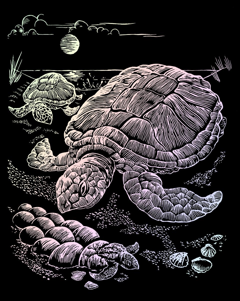 Royal & Langnickel Гравюра Морские черепахи голографическая