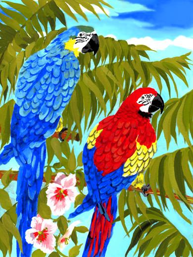Royal & Langnickel Раскраска Попугаи