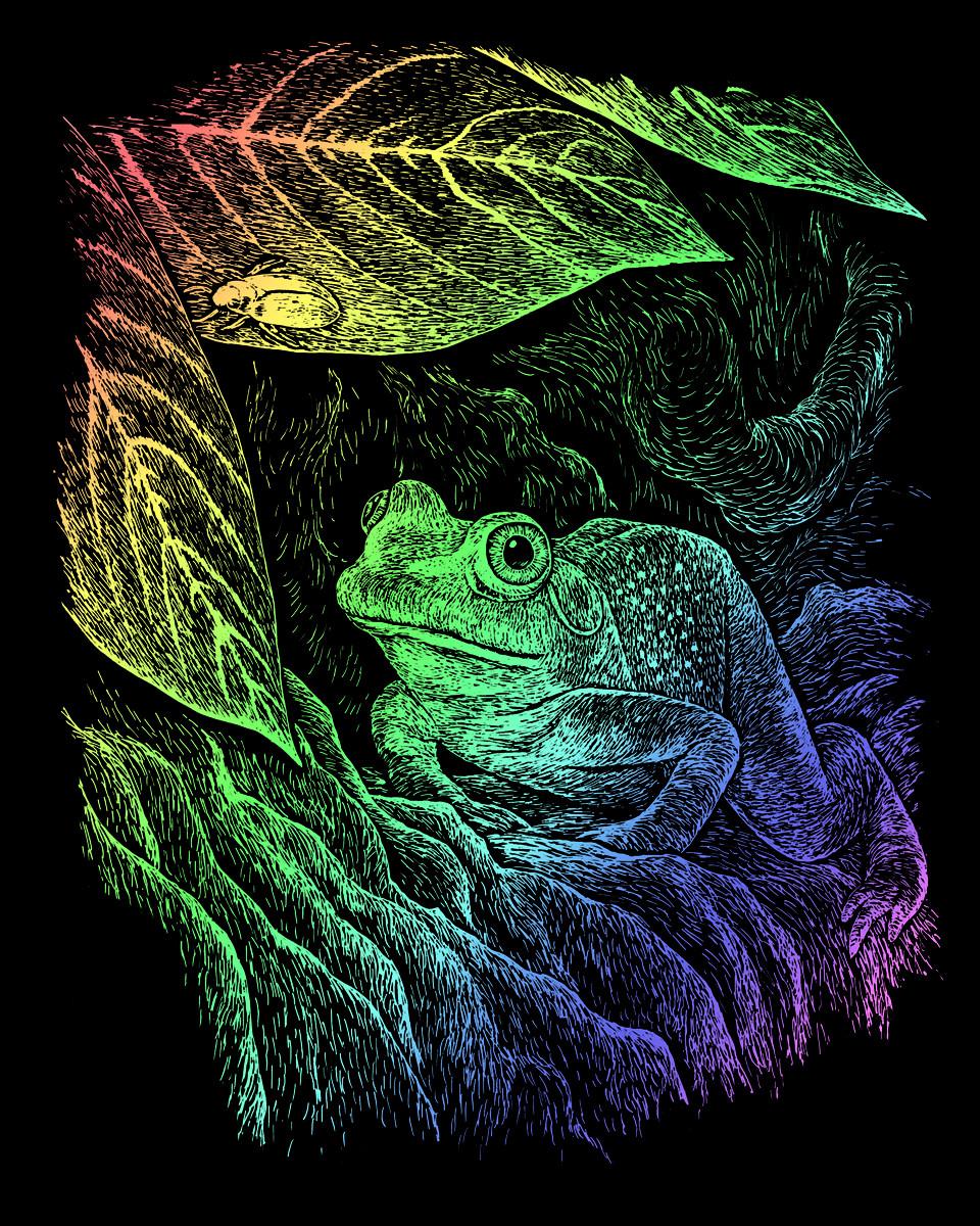 Royal & Langnickel Гравюра радужная Лягушка