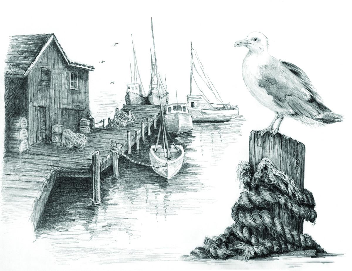 Royal & Langnickel Раскраска-эскиз Чайка