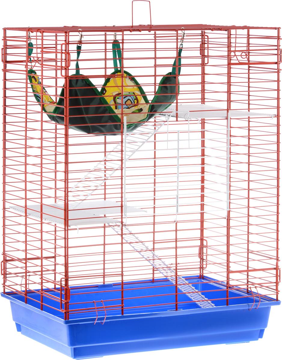 Клетка для шиншилл и хорьков ЗооМарк, цвет: синий поддон, красная решетка, 59 х 41 х 79 см725дкКФКлетка ЗооМарк, выполненная из полипропилена и металла, подходит для шиншилл и хорьков. Большая клетка оборудована длинными лестницами и гамаком. Изделие имеет яркий поддон, удобно в использовании и легко чистится. Сверху имеется ручка для переноски.Такая клетка станет уединенным личным пространством и уютным домиком для грызуна.