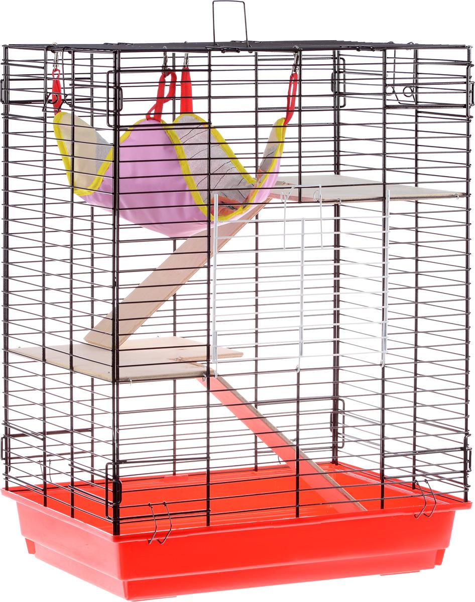 Клетка для шиншилл и хорьков ЗооМарк, цвет: красный поддон, коричневая решетка, 59 х 41 х 79 см725жкККо/725дкКлетка ЗооМарк, выполненная из полипропилена и металла, подходит для шиншилл и хорьков. Большая клетка оборудована длинными лестницами и гамаком. Изделие имеет яркий поддон, удобно в использовании и легко чистится. Сверху имеется ручка для переноски. Такая клетка станет уединенным личным пространством и уютным домиком для грызуна.