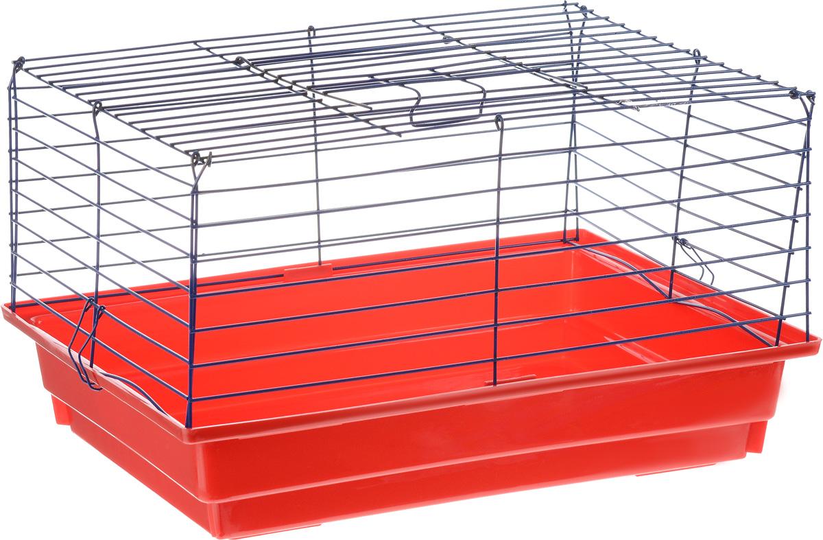 Клетка для кролика  ЗооМарк , цвет: красный поддон, синяя решетка, 50 х 35 х 30 см - Клетки, вольеры, будки