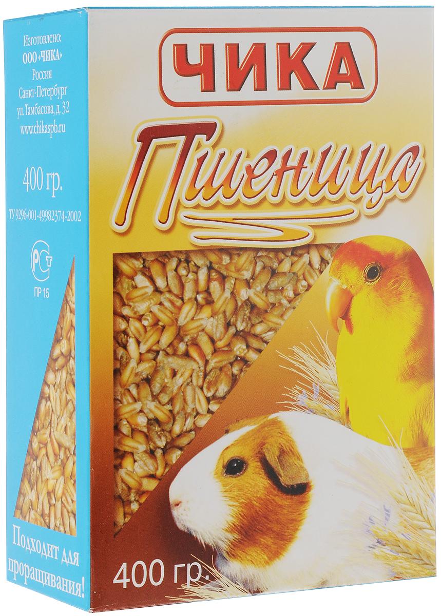 Добавка к корму Чика Пшеница для птиц и грызунов, 400 г гарньер цвет пшеница фото
