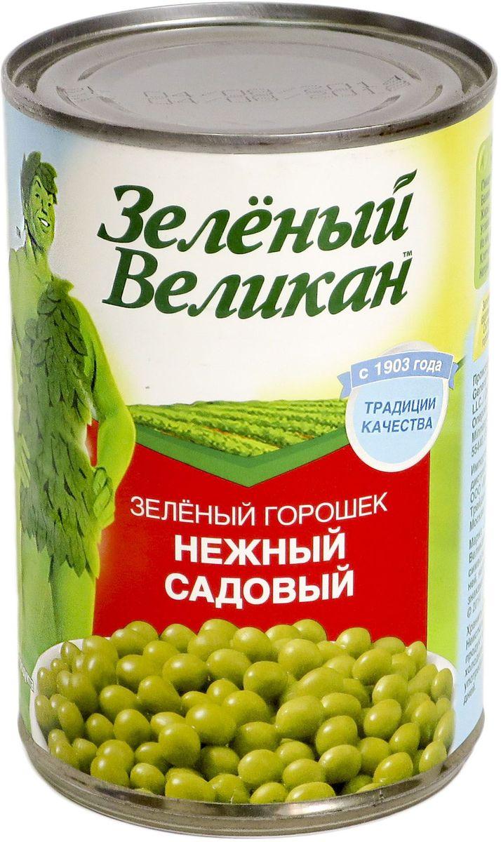 Зеленый великан горошек садовый, 425 г18113Горошекнежный,специальной консервации, очень хорош для салатов, и каксамостоятельное блюдо или гарнир.