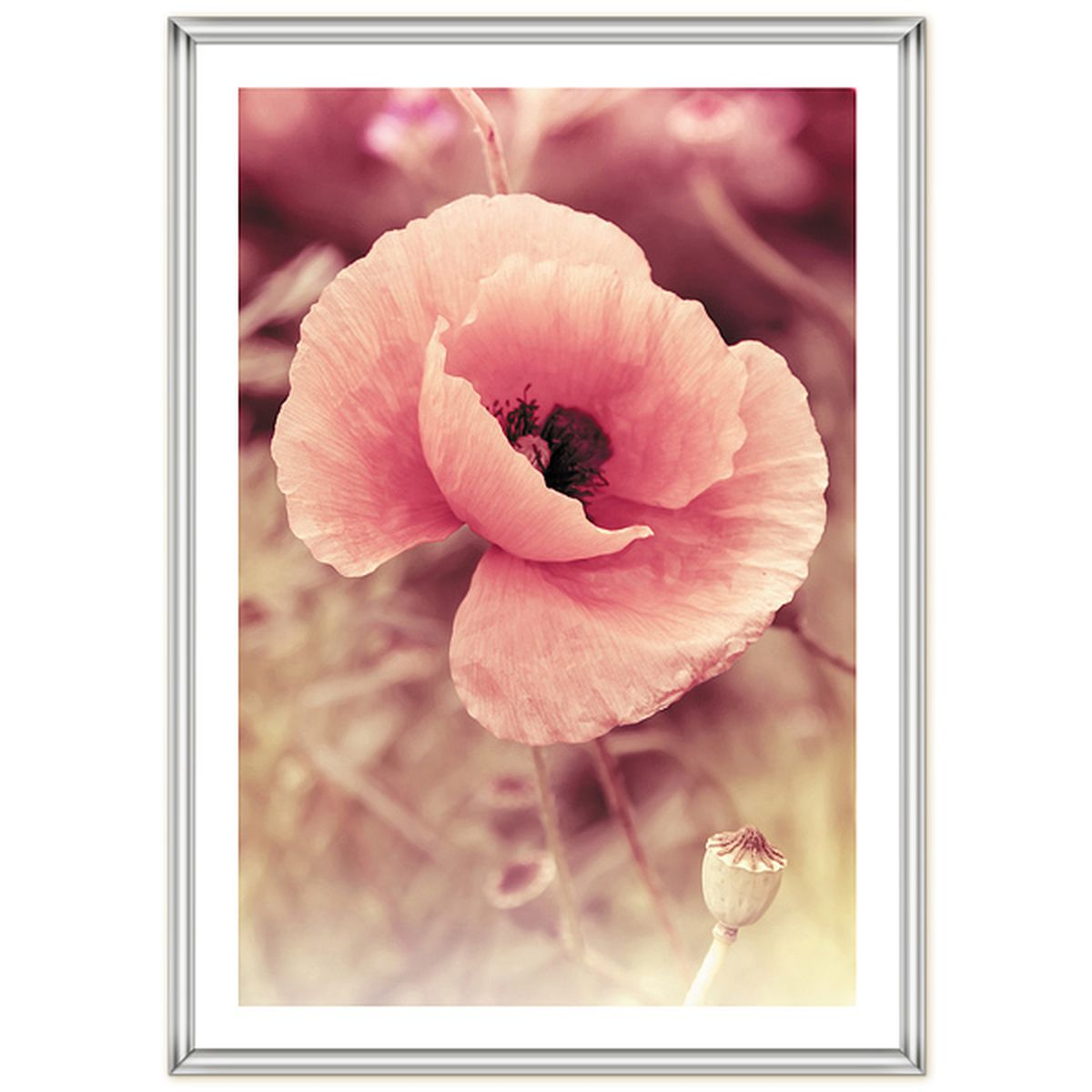 Фоторамка Pioneer Poster Silver, 40 x 60 см9117 PR foilРамка для фото формата 40х60 см.Материал: пластик.Материалы, использованные в изготовлении рамок, обеспечивают высокое качество хранения Ваших фотографий, поэтому фотографии не желтеют со временем.
