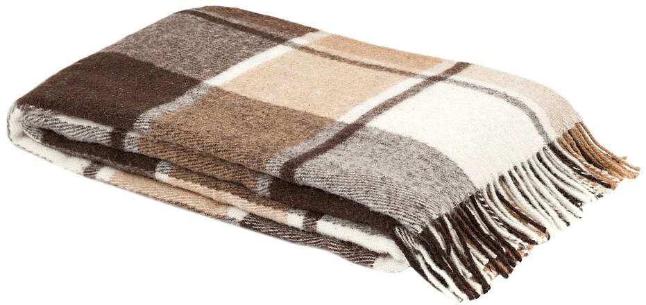 Плед Пиросмани, цвет: бежевый, темно-коричневый, 170 х 200 см. 1-207-170_031-207-170_03Мягкий и приятный плед Пиросмани изготовлен из 100% новозеландской овечьей шерсти. Плед добавит комнате уюта и согреет в прохладные дни. Такое теплое украшение может стать отличным подарком друзьям и близким! Под шерстяным пледом вам никогда не станет жарко или холодно, он помогает поддерживать постоянную температуру тела. Шерсть обладает прекрасной воздухопроницаемостью, она поглощает и нейтрализует вредные вещества и славится своими целебными свойствами. Плед из шерсти станет лучшим лекарством для людей, страдающих ревматизмом, радикулитом, головными и мышечными болями, сердечно-сосудистыми заболеваниями и нарушениями кровообращения. Шерсть не электризуется. Она прочна, износостойка, долговечна. Наконец, шерсть просто приятна на ощупь, ее мягкость и фактура вызывают потрясающие тактильные ощущения!Пиросмани - коллекция пледов с кистями, уменьшенной плотности из 100% натуральной новозеландской овечьей шерсти. Характеристики:Материал: 100% новозеландская овечья шерсть. Цвет: бежевый, темно-коричневый. Размер пледа: 170 см х 200 см. Размер упаковки: 54 см х 9 см х 43 см. Артикул: 1-206-140.