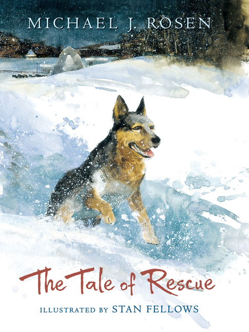 The Tale of Rescue girl wonder to the rescue