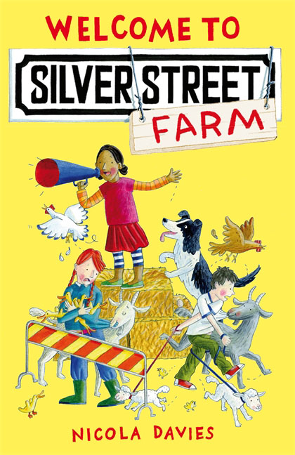 Welcome to Silver Street Farm a year on ladybug farm