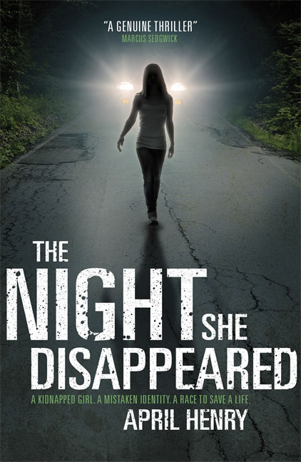 The Night She Disappeared the missing girl