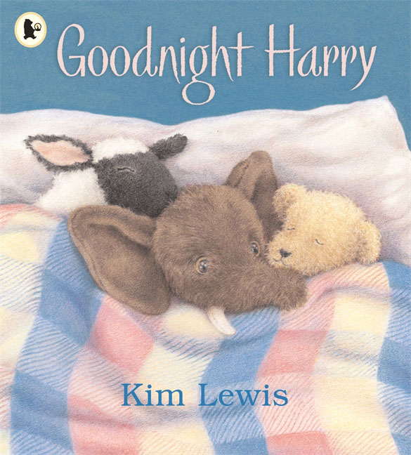 Goodnight, Harry little owl says goodnight slide and seek board bk