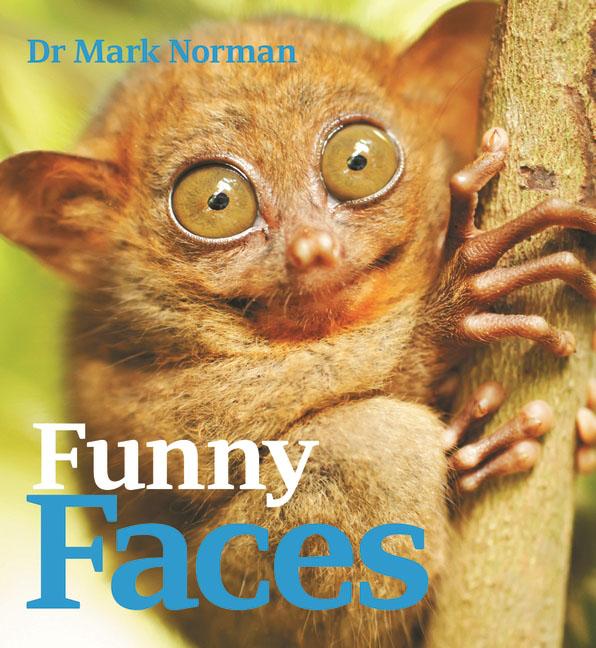 Купить Funny Faces