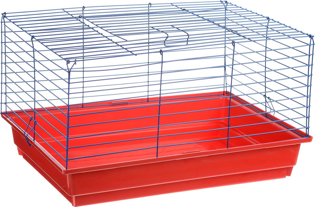 Клетка для кролика ЗооМарк, цвет: красный поддон, синяя решетка, 60 х 40 х 35 см620КСКлассическая клетка ЗооМарк со сплошным дном станет уединенным личным пространством и уютным домиком для кролика. Изделие выполнено из металла и пластика. Клетка надежно закрывается на защелки. Легко чистится. Для более удобной транспортировки клетку можно сложить.