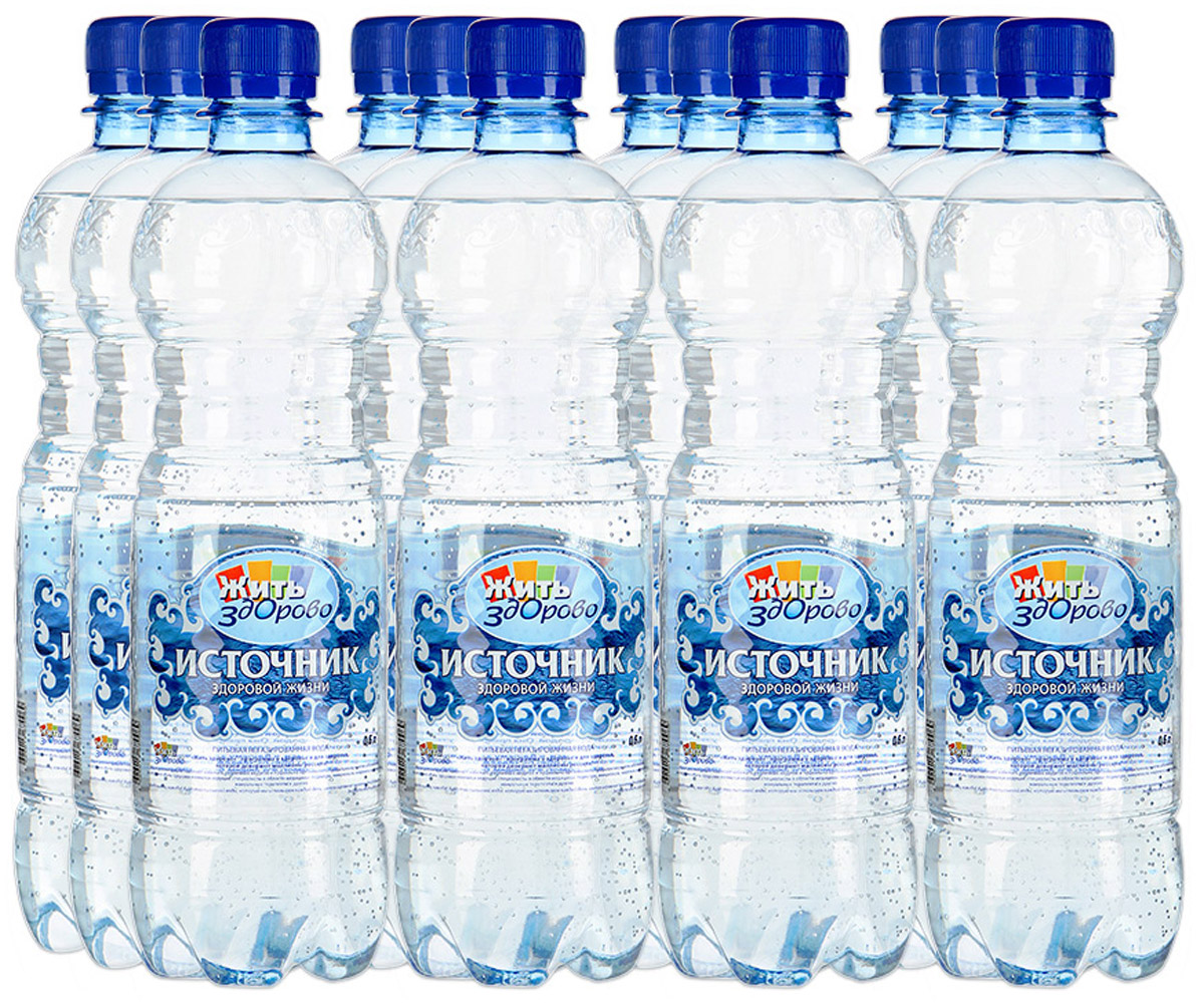 """""""Источник здоровой жизни"""" питьевая вода негазированная, 12 шт по 0,6 л"""