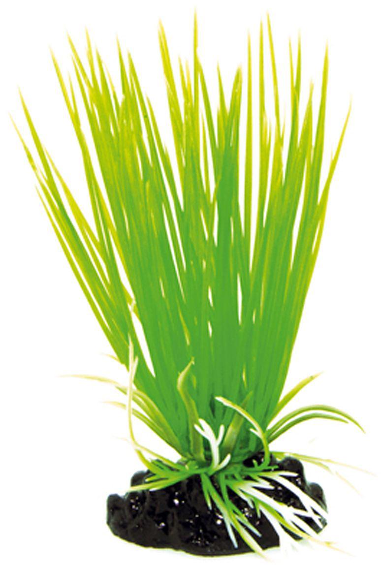 Искусственное растение для аквариума Dezzie, 10 см. 56020055602005Подводное искусственное растение для аквариума Dezzie является неотъемлемой частью композиции аквариума, радует глаз, а также может быть уютным убежищем для рыб и других обитателей аквариума. Пластиковое растение имеет устойчивое дно, которое не нуждается в дополнительном утяжелении и легко устанавливается в грунт. Растение очень практично в использовании, имеет стойкую к воздействию воды окраску и не требует обременительного ухода. Его можно легко достать и протереть тряпкой во время уборки аквариума. Растения из пластика создадут неповторимый дизайн пресноводного или морского аквариума.Высота растения: 10 см.