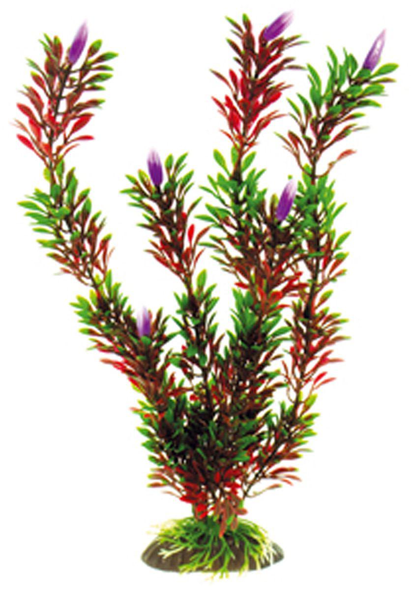 Искусственное растение для аквариума Dezzie, 30 см. 56020655602065Подводное искусственное растение для аквариума Dezzie является неотъемлемой частью композиции аквариума, радует глаз, а также может быть уютным убежищем для рыб и других обитателей аквариума. Пластиковое растение имеет устойчивое дно, которое не нуждается в дополнительном утяжелении и легко устанавливается в грунт. Растение очень практично в использовании, имеет стойкую к воздействию воды окраску и не требует обременительного ухода. Его можно легко достать и протереть тряпкой во время уборки аквариума. Растения из пластика создадут неповторимый дизайн пресноводного или морского аквариума.Высота растения: 30 см.