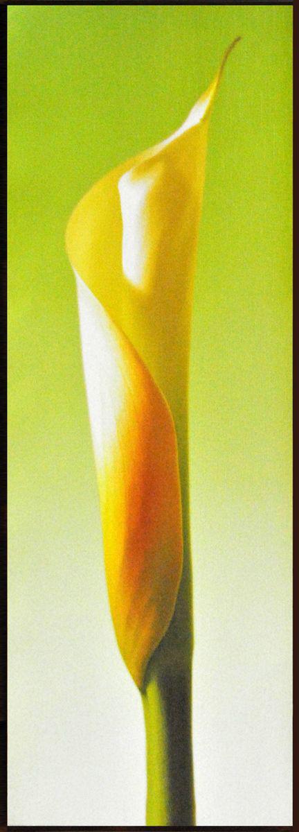 Декобокс СолоДомДекор Калла на зеленом 2, 25 х 70 см2000191902570Декобокс СолоДомДекор Калла на зеленом 2 выполнен из бумаги, рама - из МДФ. Современные технологии, уникальное оборудование и цифровая печать, используемые в производстве, делают постер устойчивым к выцветанию и обеспечивают исключительное качество произведений. Благодаря наличию необходимых креплений в комплекте установка не займет много времени. Декобокс - это прекрасная возможность создать яркий акцент при оформлении любого помещения. Картина обязательно привлечет внимание и подарит немало приятных впечатлений своим обладателям. Правила ухода: можно протирать сухой, мягкой тканью.