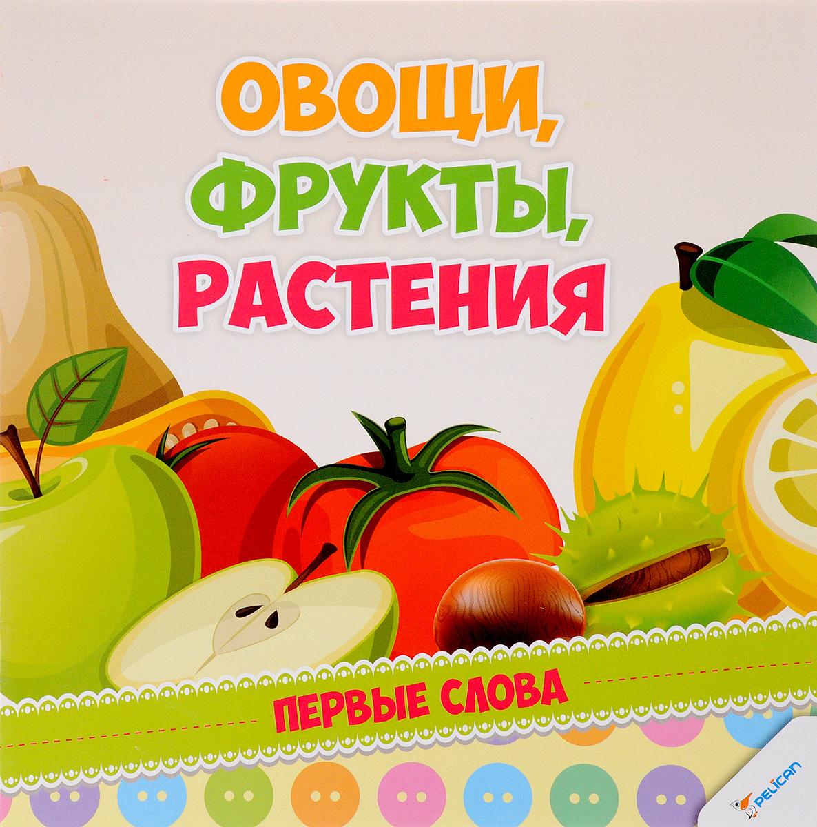 Купить Овощи, фрукты, растения