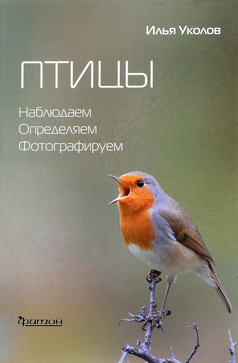 Zakazat.ru Птицы. Наблюдаем, определяем, фотографируем. Илья Уколов