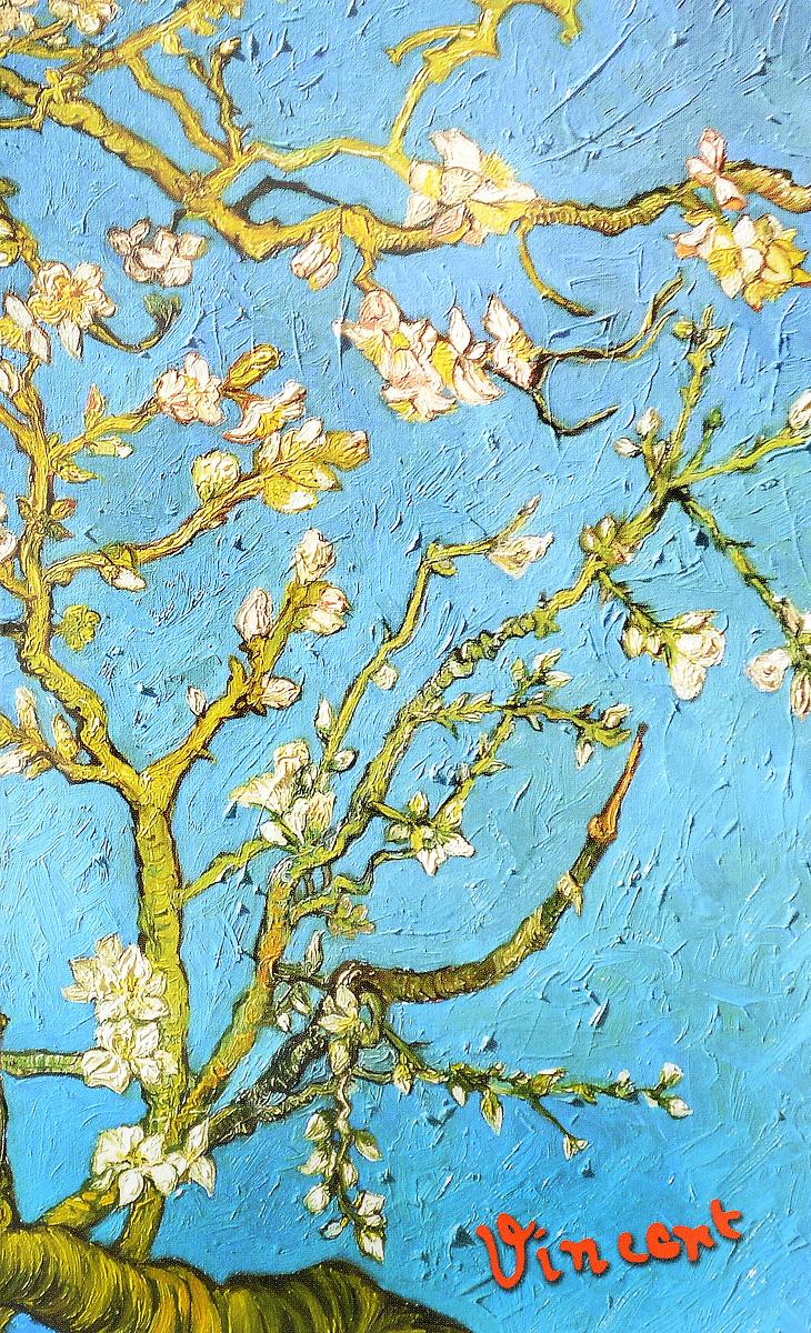 Цветущие ветки миндаля. Блокнот в пластиковой обложке блокнот в пластиковой обложке ван гог звёздная ночь формат а5 160 стр