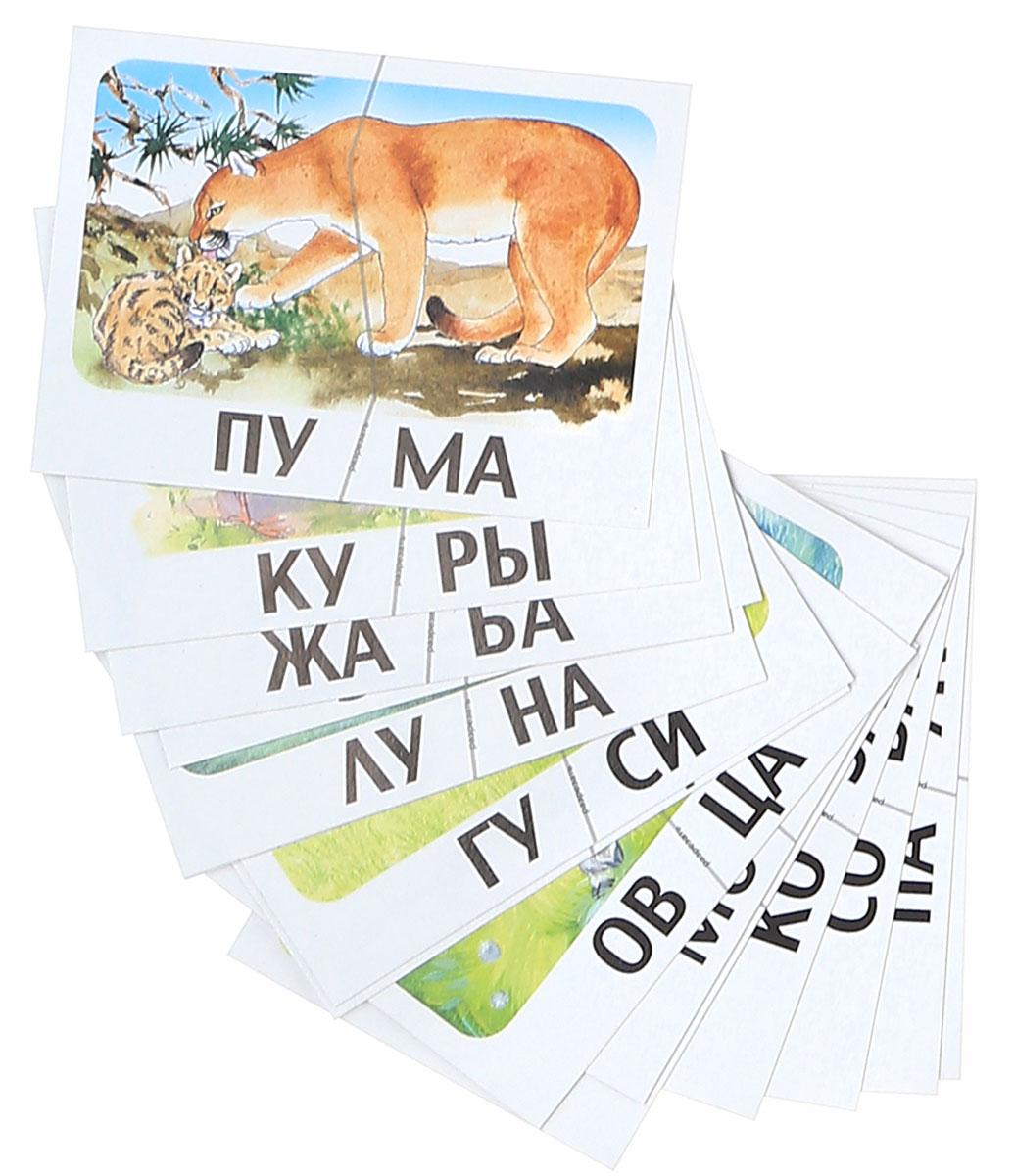 Сова. Слова из двух слогов. Разрезные карточки